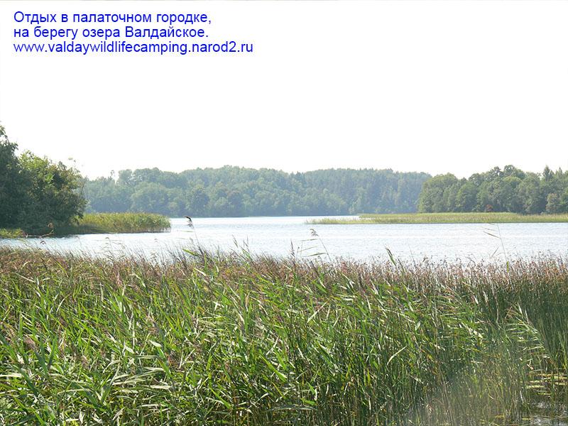 совместный отдых на природе, поиск попутчиков россия,